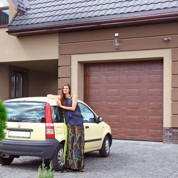Секционные гаражные ворота Alutech Trend 2500 х 2250